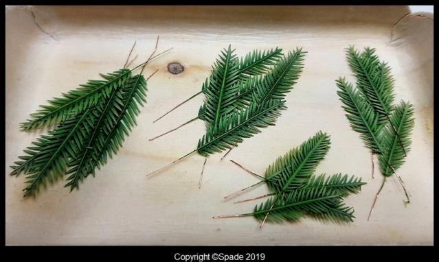 Pas à pas - La confection d'un palmier 1/72e 1110