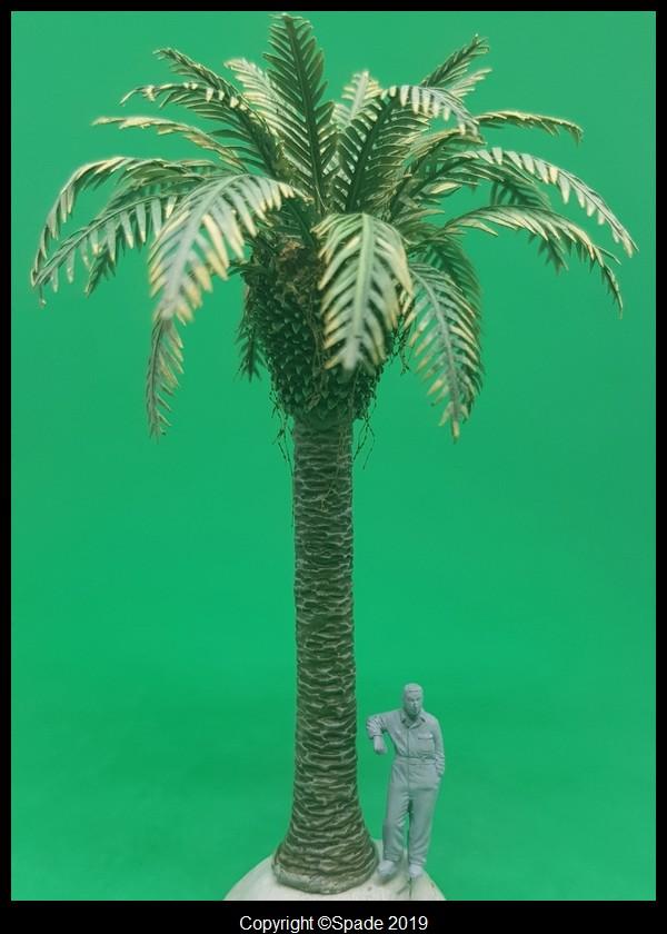 Pas à pas - La confection d'un palmier 1/72e Smarts34