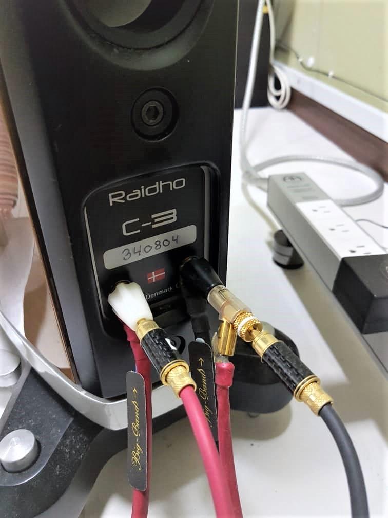 Raidho C3 Speaker (SOLD) Whatsa14