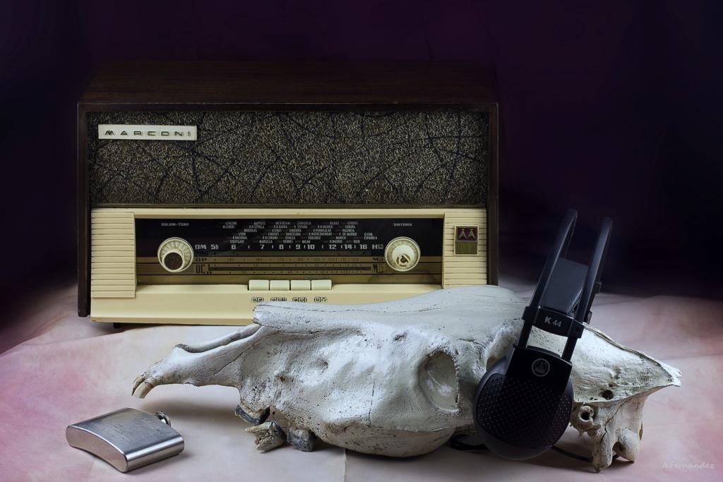 Escuchando musica Dsc_4512