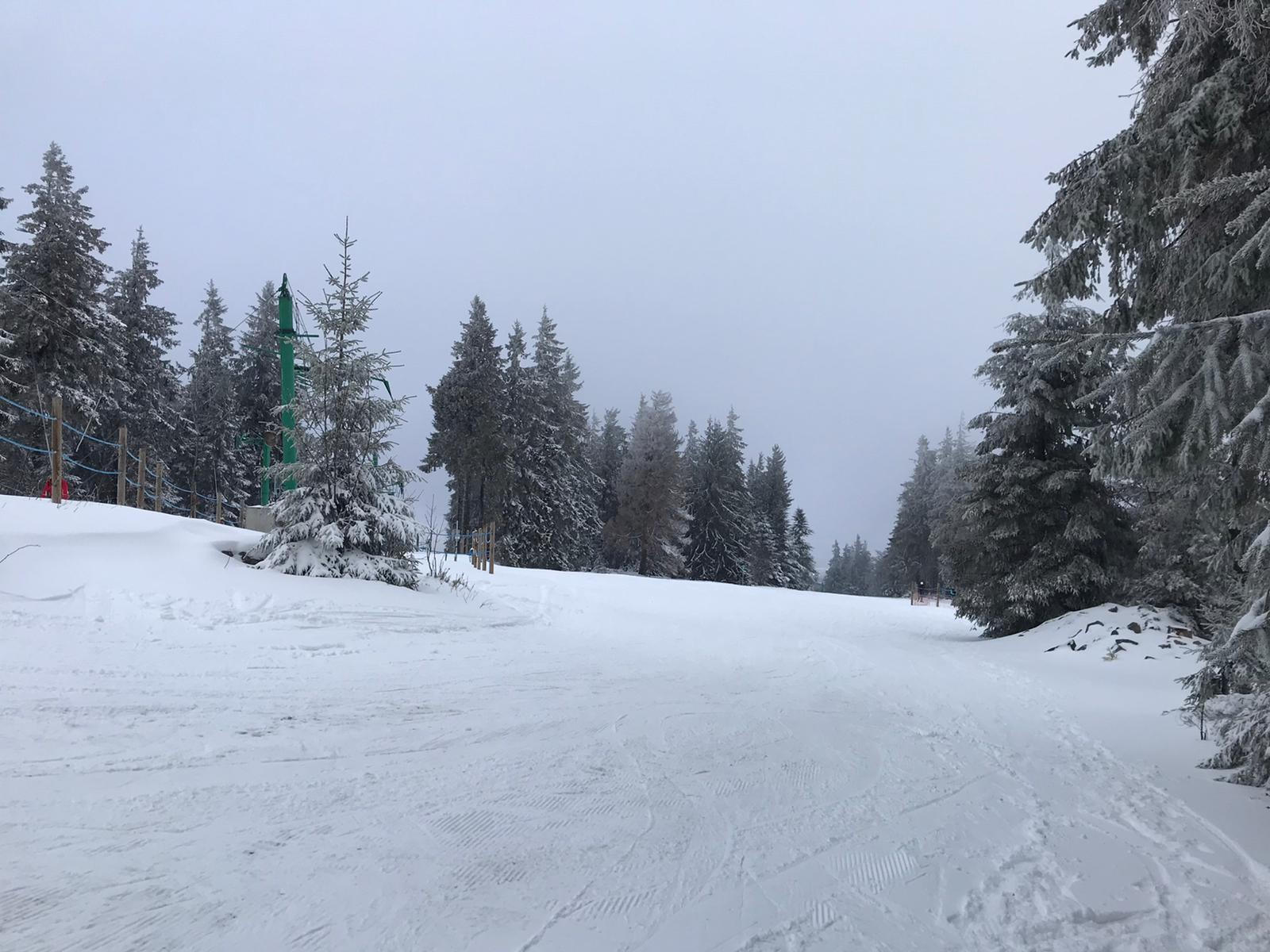 2020/03 - Compte-rendu Stage découverte SnowScoot - Lac Blanc (Vosges 88). Lac_bl24