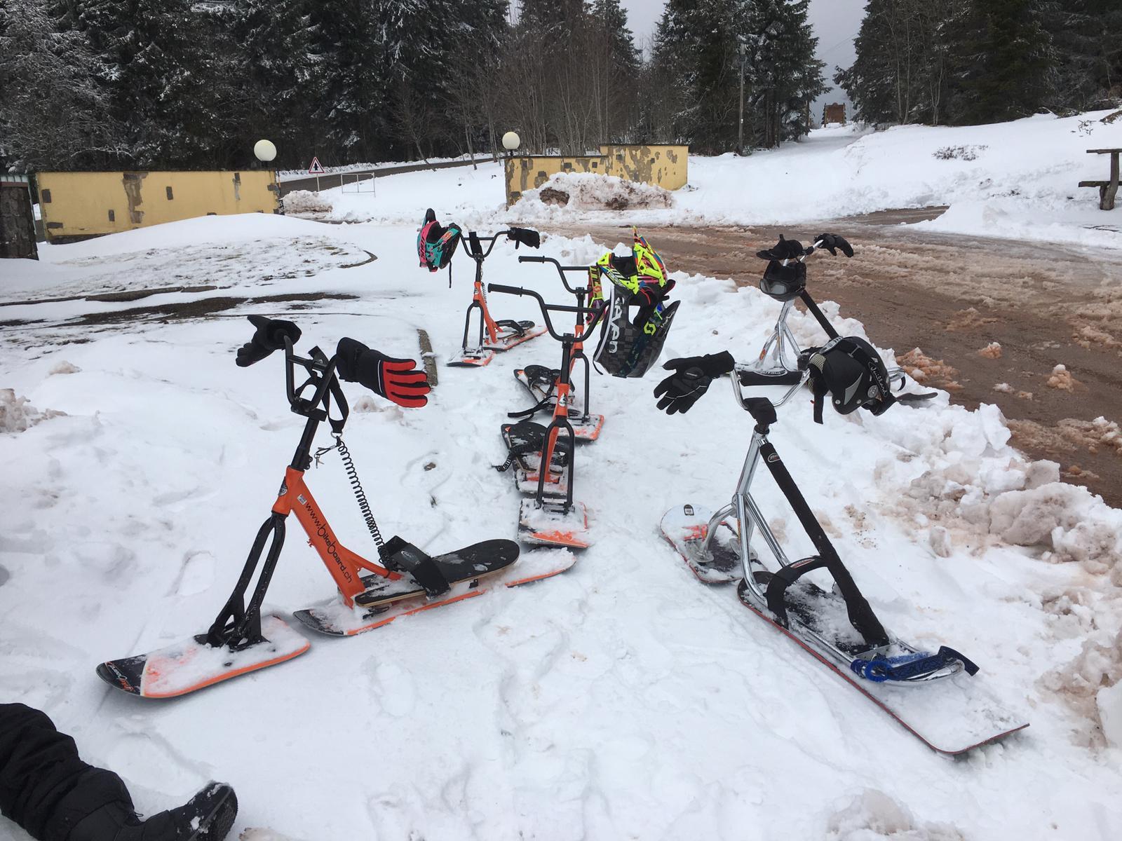 2020/03 - Compte-rendu Stage découverte SnowScoot - Lac Blanc (Vosges 88). Lac_bl26