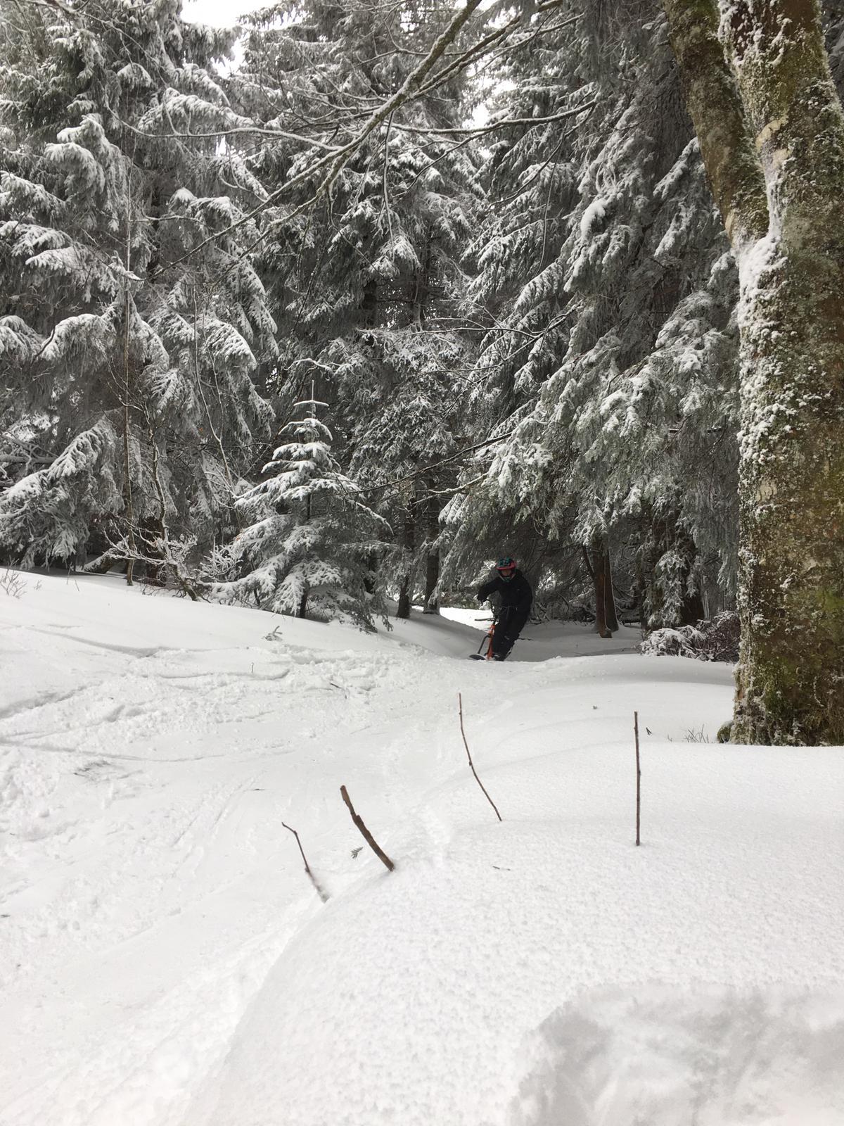 2020/03 - Compte-rendu Stage découverte SnowScoot - Lac Blanc (Vosges 88). Lac_bl30