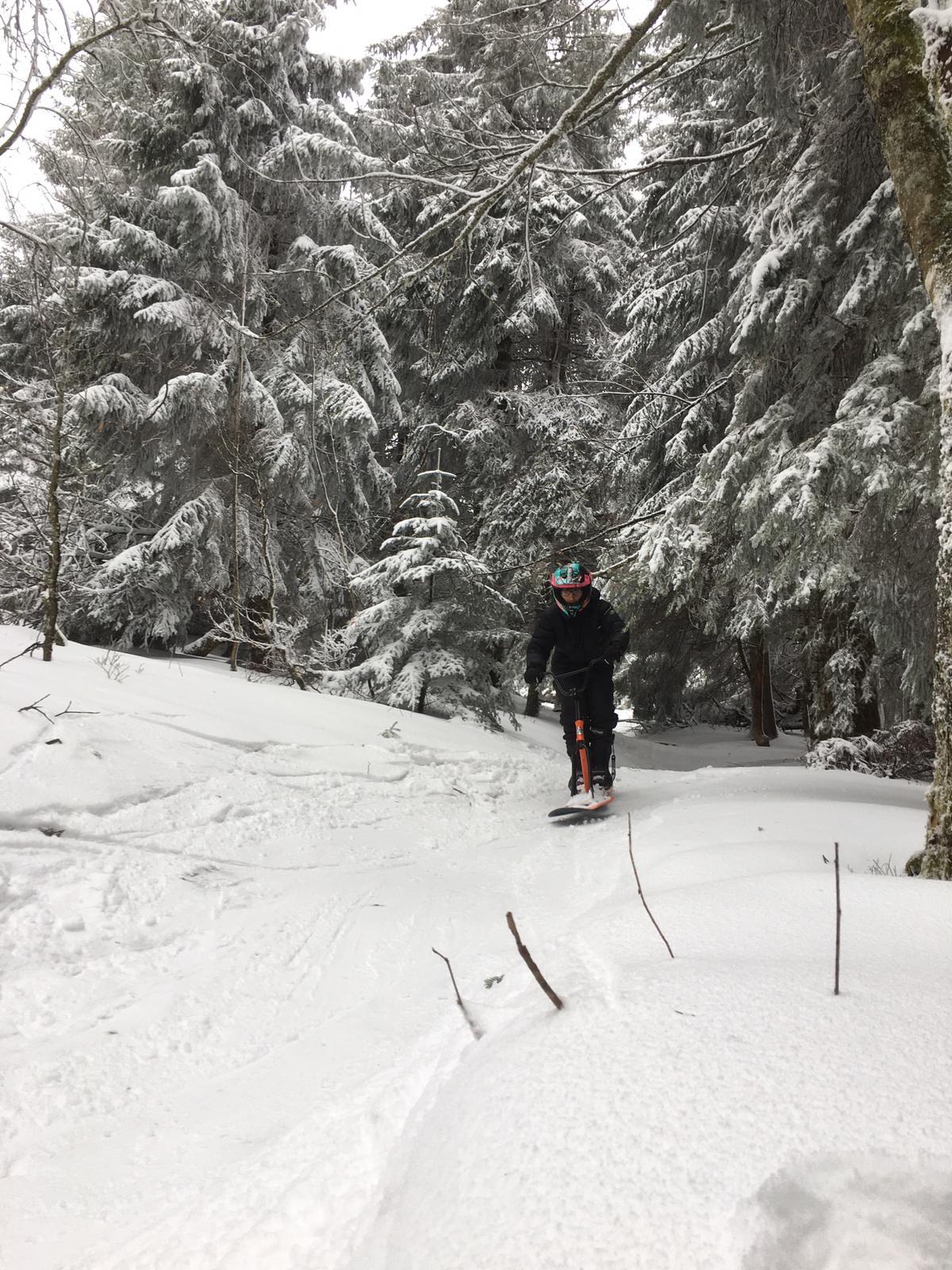 2020/03 - Compte-rendu Stage découverte SnowScoot - Lac Blanc (Vosges 88). Lac_bl31