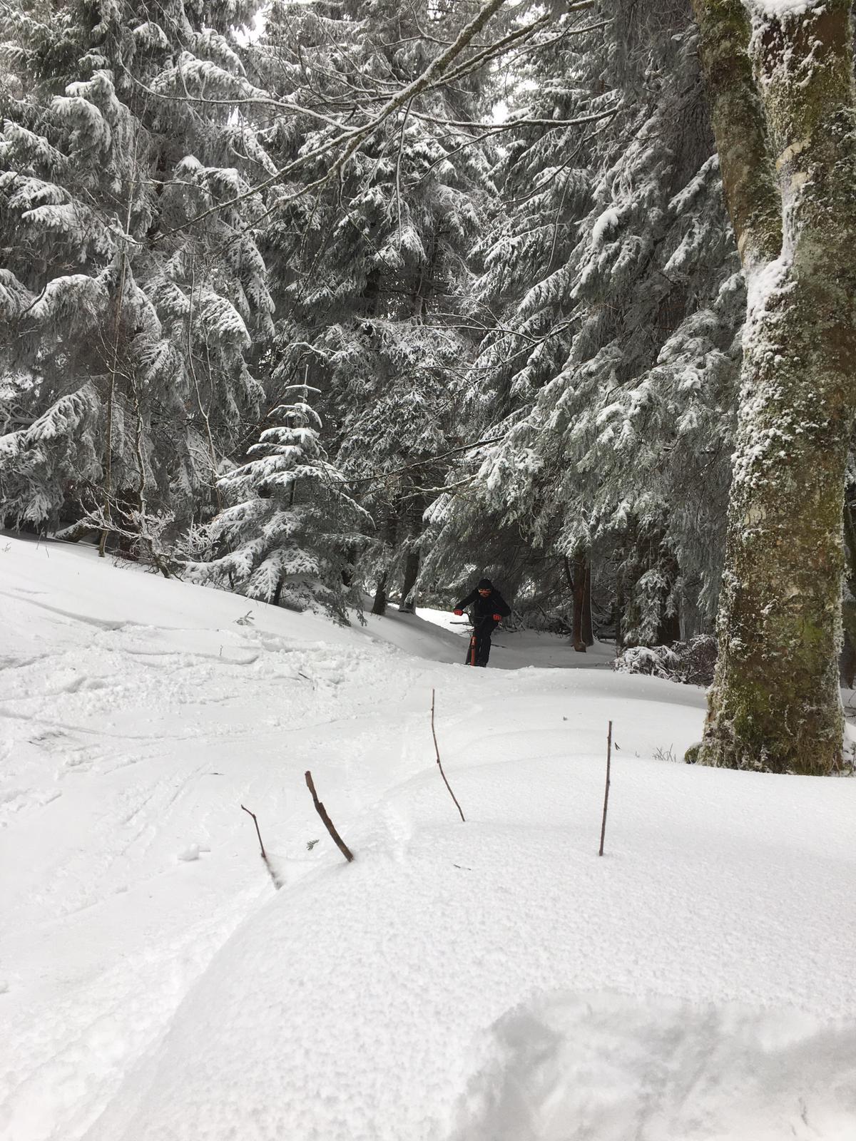 2020/03 - Compte-rendu Stage découverte SnowScoot - Lac Blanc (Vosges 88). Lac_bl32