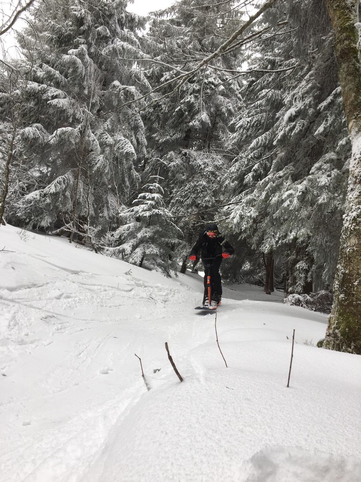 2020/03 - Compte-rendu Stage découverte SnowScoot - Lac Blanc (Vosges 88). Lac_bl34