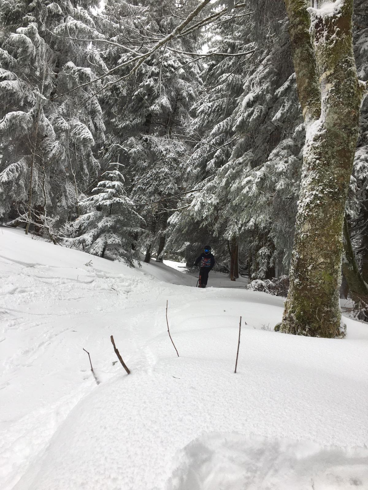 2020/03 - Compte-rendu Stage découverte SnowScoot - Lac Blanc (Vosges 88). Lac_bl36