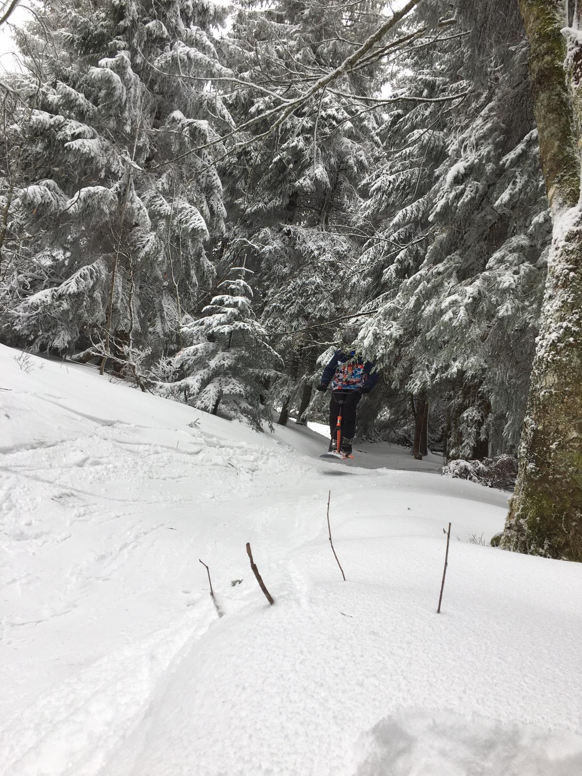 2020/03 - Compte-rendu Stage découverte SnowScoot - Lac Blanc (Vosges 88). Lac_bl37