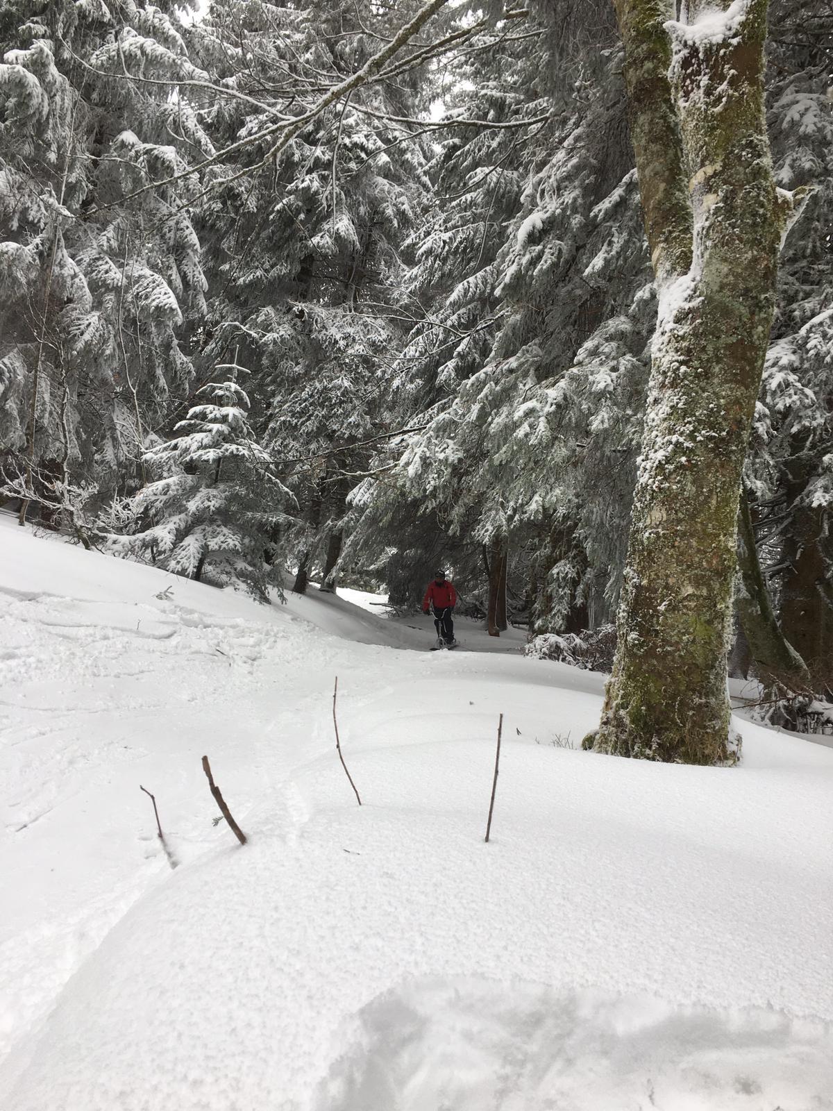 2020/03 - Compte-rendu Stage découverte SnowScoot - Lac Blanc (Vosges 88). Lac_bl39