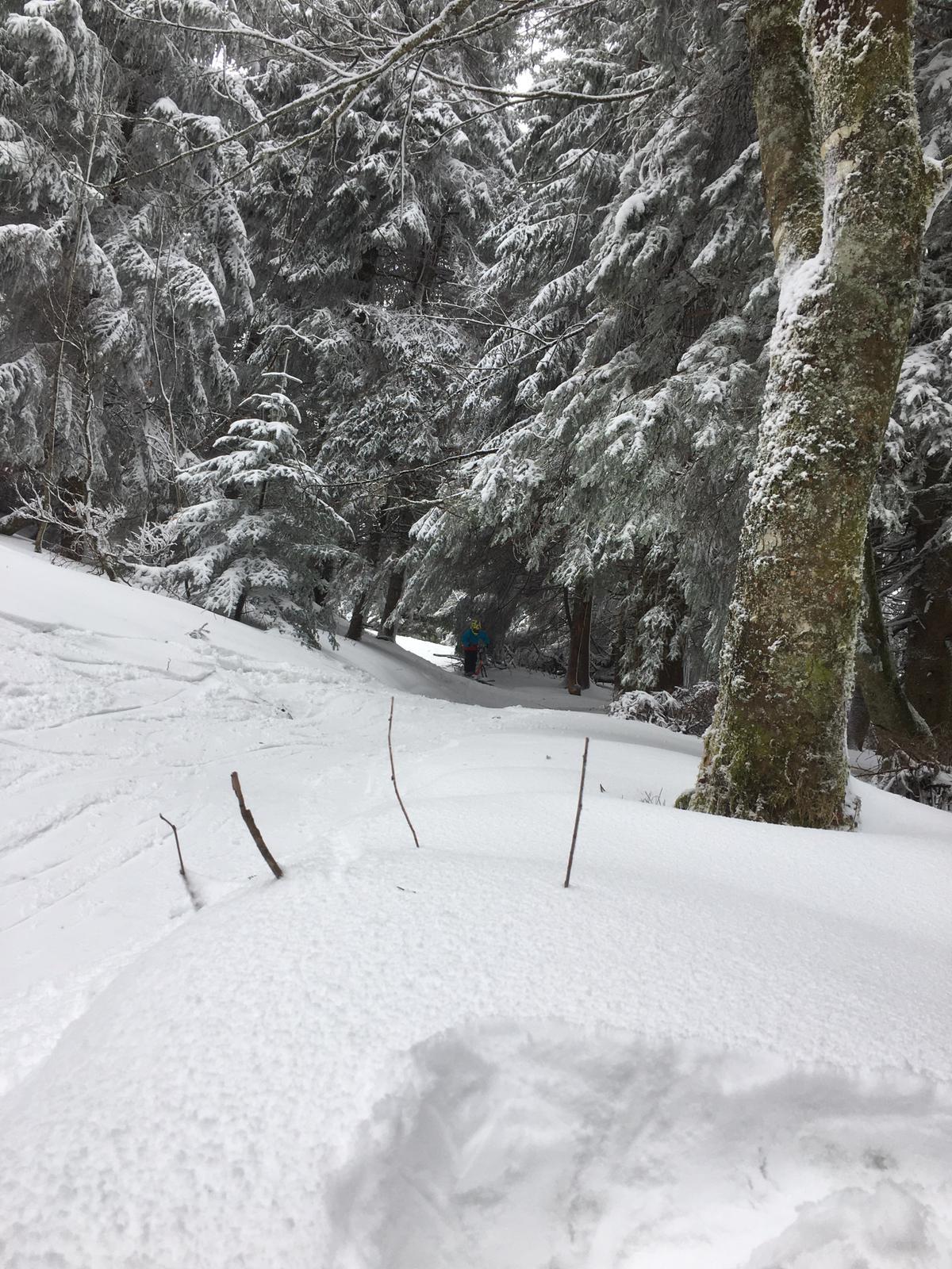 2020/03 - Compte-rendu Stage découverte SnowScoot - Lac Blanc (Vosges 88). Lac_bl43