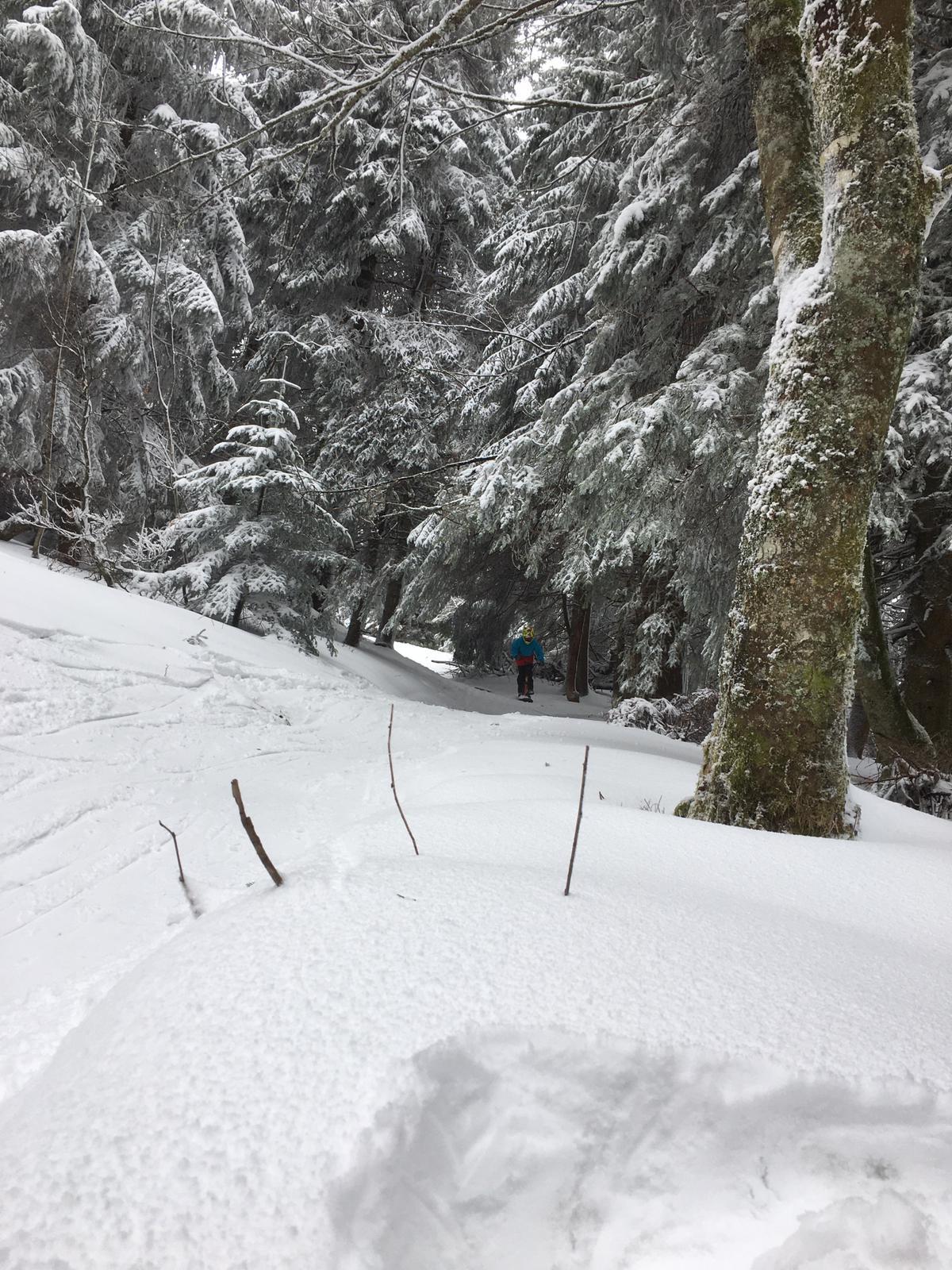 2020/03 - Compte-rendu Stage découverte SnowScoot - Lac Blanc (Vosges 88). Lac_bl45