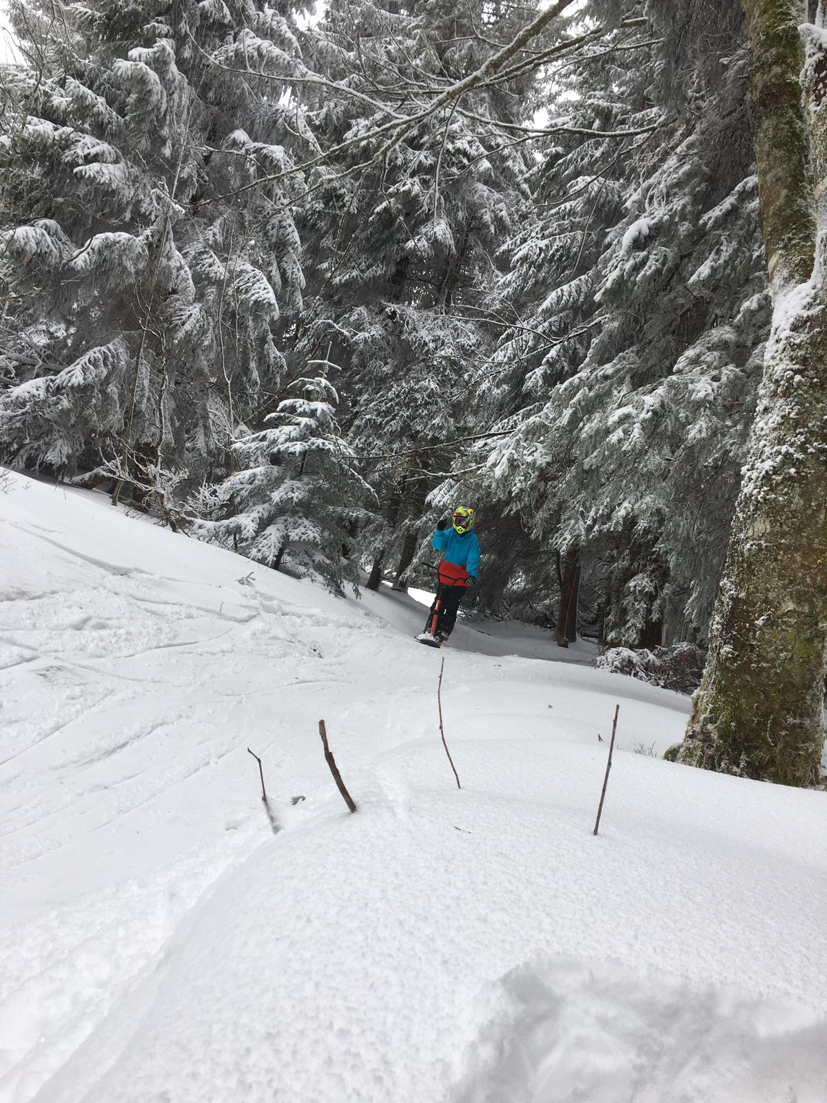 2020/03 - Compte-rendu Stage découverte SnowScoot - Lac Blanc (Vosges 88). Lac_bl46