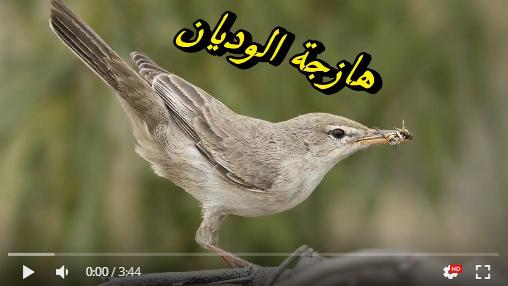 عالم الطبيعة world of nature - البوابة** Aoa35