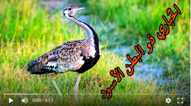 عالم الطبيعة world of nature - البوابة** Oaoa_o14