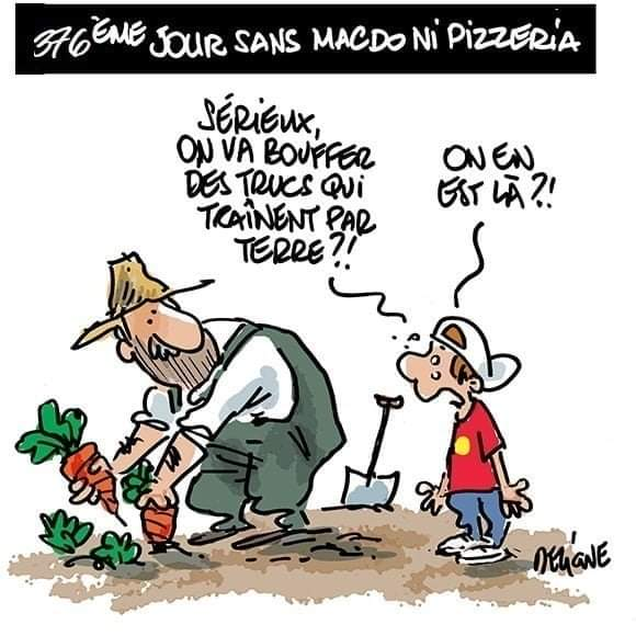 Humour covid - Page 8 Facebo12