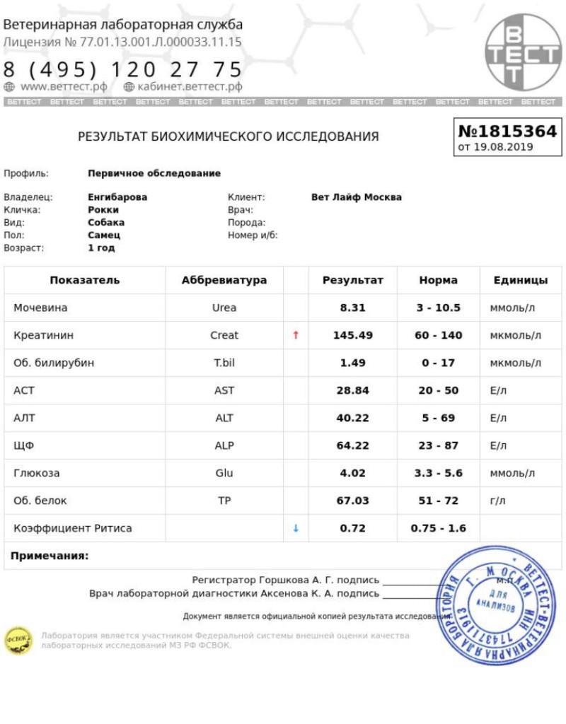 Москва, Ленд Грейп Шеридан, кобель, 24.04.2018 15662013