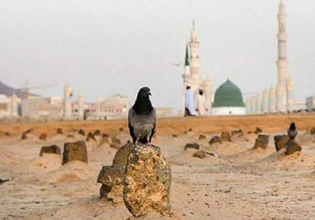 توبيكات الصلاة على النبي مزخرفة 43219110