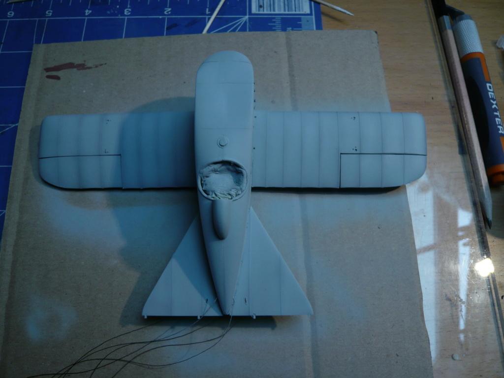 dfw t-28 floh 1/32 planet models P1080326