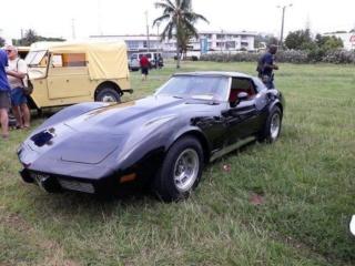 Taurillon de Nouméa  Corvette C3 1977  49787611