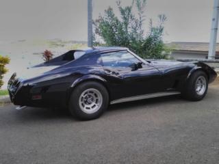Taurillon de Nouméa  Corvette C3 1977  50545011