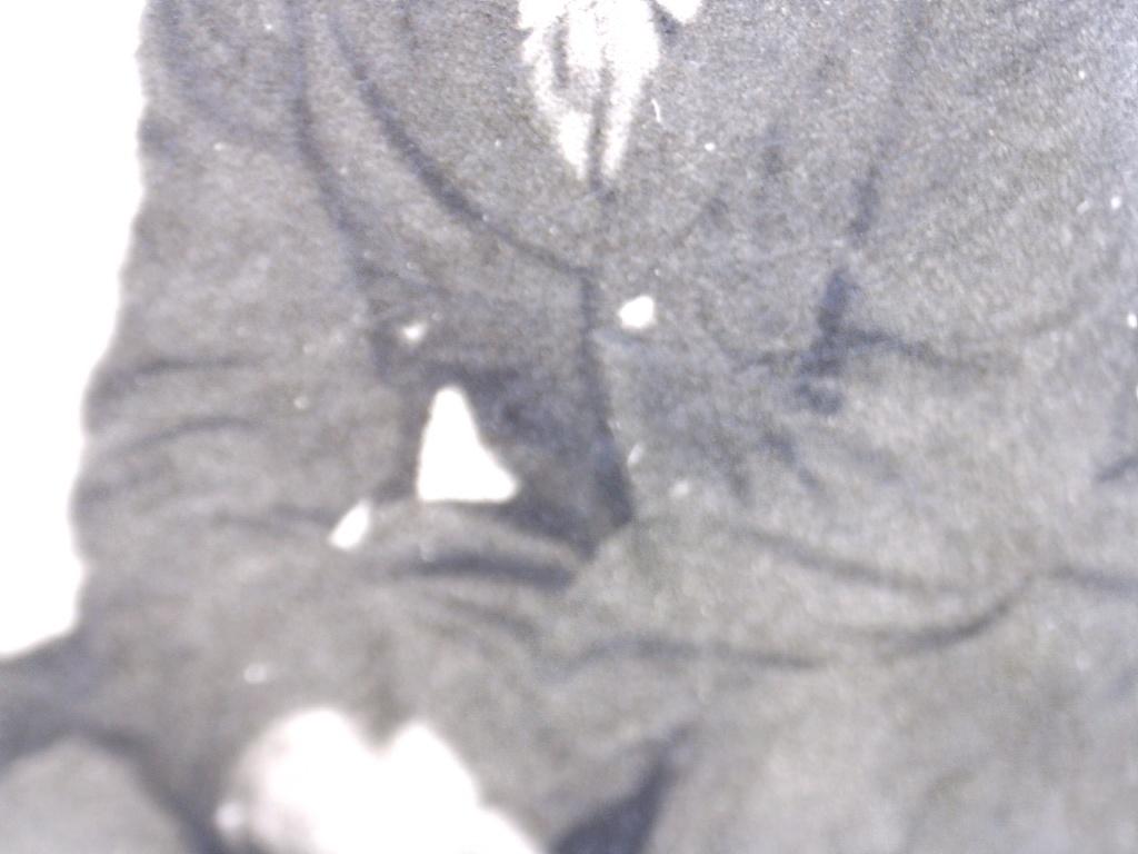 A identifier Groupe de militaires en 1958 20430110