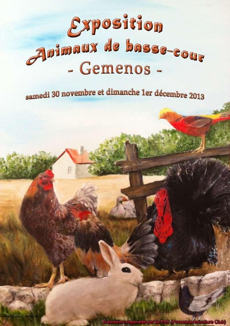 1ere EXPOSITION AVICOLE à Gemenos (paca 13) Pac_af10