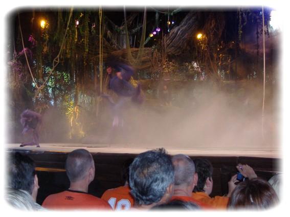 Spectacle: Tarzan, la rencontre. (représentation annulée pour 2013) Dscf2810