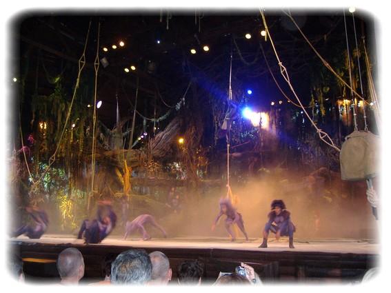 Spectacle: Tarzan, la rencontre. (représentation annulée pour 2013) Dscf2812