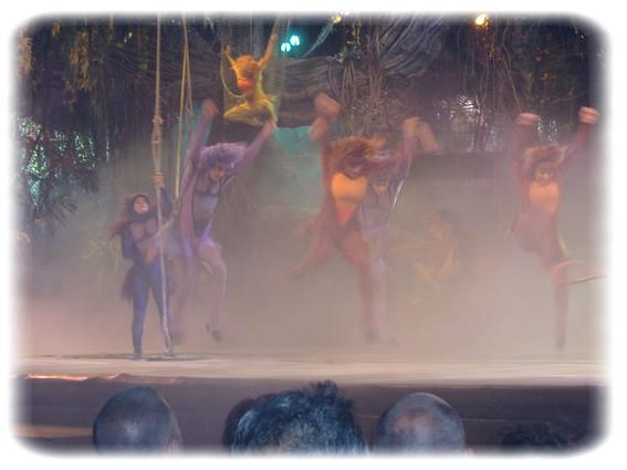 Spectacle: Tarzan, la rencontre. (représentation annulée pour 2013) Dscf2815