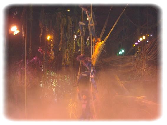 Spectacle: Tarzan, la rencontre. (représentation annulée pour 2013) Dscf2816