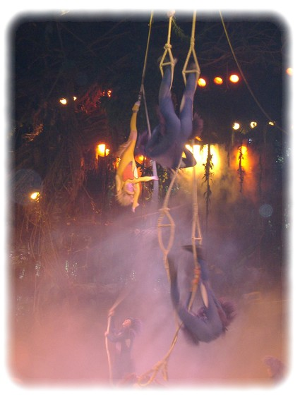 Spectacle: Tarzan, la rencontre. (représentation annulée pour 2013) Dscf2817