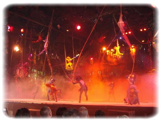 Spectacle: Tarzan, la rencontre. (représentation annulée pour 2013) Dscf2818