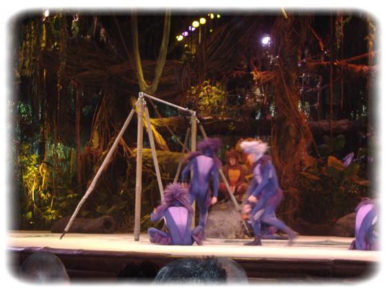 Spectacle: Tarzan, la rencontre. (représentation annulée pour 2013) Dscf2913