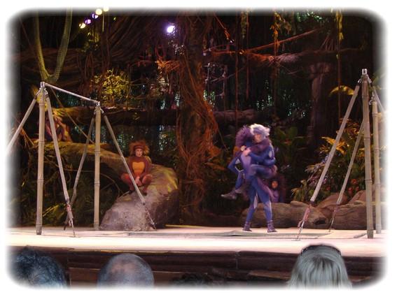 Spectacle: Tarzan, la rencontre. (représentation annulée pour 2013) Dscf2914