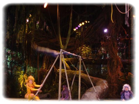 Spectacle: Tarzan, la rencontre. (représentation annulée pour 2013) Dscf2916