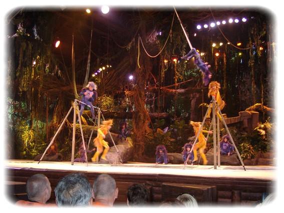 Spectacle: Tarzan, la rencontre. (représentation annulée pour 2013) Dscf2917