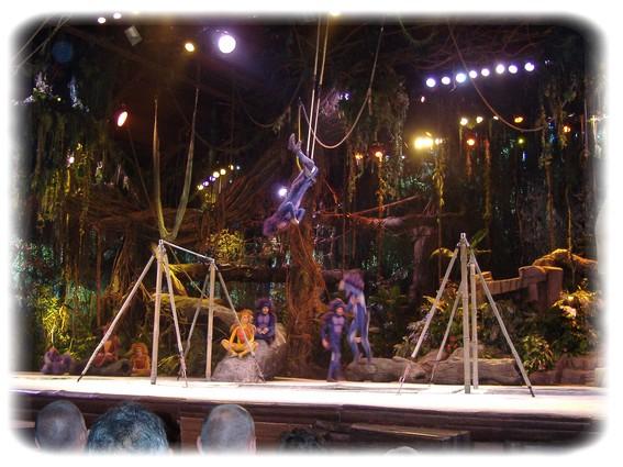 Spectacle: Tarzan, la rencontre. (représentation annulée pour 2013) Dscf2918