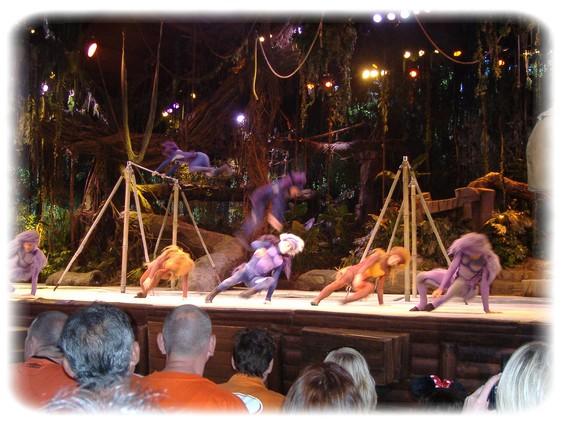 Spectacle: Tarzan, la rencontre. (représentation annulée pour 2013) Dscf2921