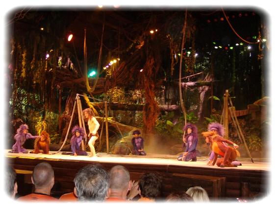 Spectacle: Tarzan, la rencontre. (représentation annulée pour 2013) Dscf2924