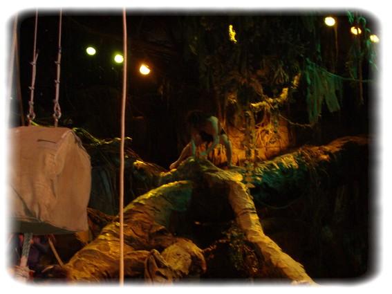Spectacle: Tarzan, la rencontre. (représentation annulée pour 2013) Dscf2926