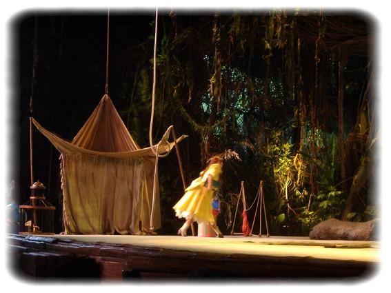 Spectacle: Tarzan, la rencontre. (représentation annulée pour 2013) Dscf2931