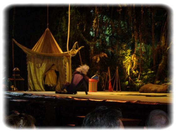 Spectacle: Tarzan, la rencontre. (représentation annulée pour 2013) Dscf2932