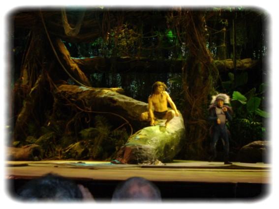 Spectacle: Tarzan, la rencontre. (représentation annulée pour 2013) Dscf2933