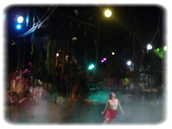 Spectacle: Tarzan, la rencontre. (représentation annulée pour 2013) Dscf2935