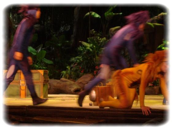 Spectacle: Tarzan, la rencontre. (représentation annulée pour 2013) Dscf2944