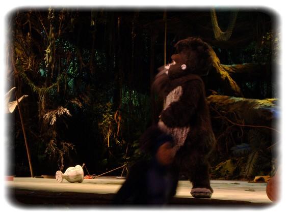 Spectacle: Tarzan, la rencontre. (représentation annulée pour 2013) Dscf2948