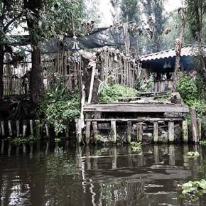 L'île des poupées au Mexique Img_4710