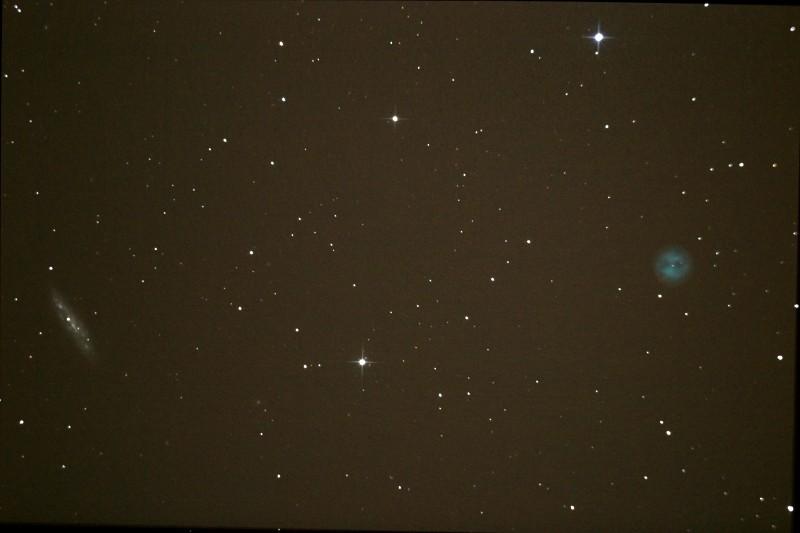 Observation samedi 9 mars 2013 Hibou_10