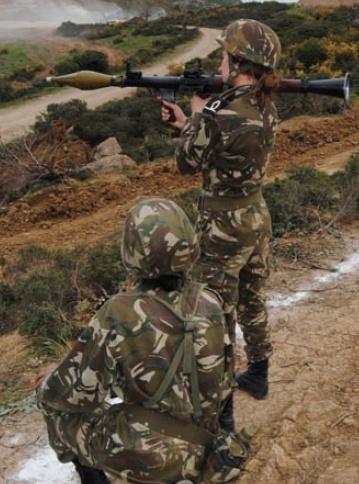 القوات البرية الجزائرية  - صفحة 2 Sdsdz11