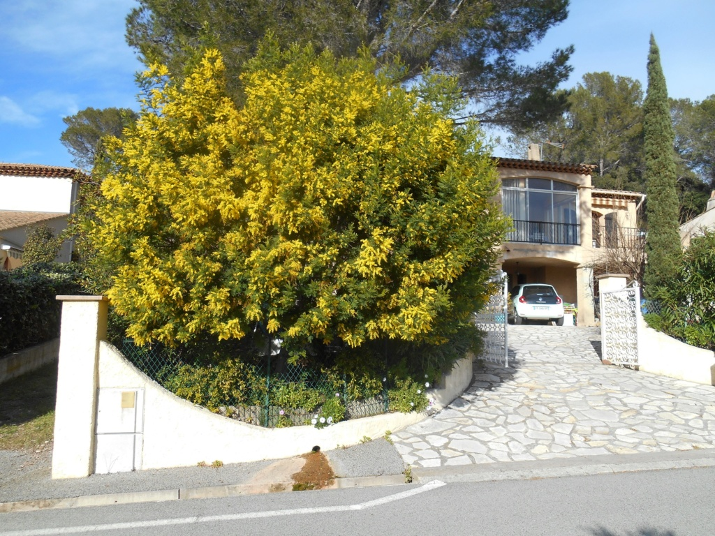 Un bonjour de la Côte d'Azur (en 2020) R-202010